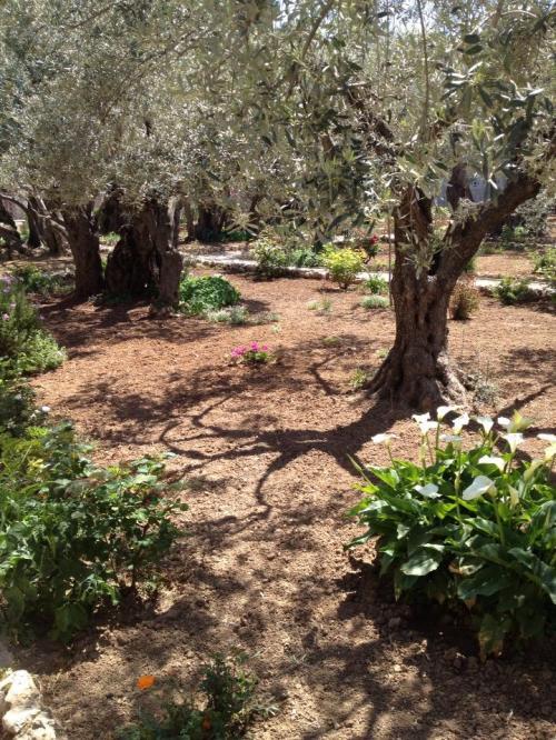 Getsemane 13 03 skärtorsdag Lotta S